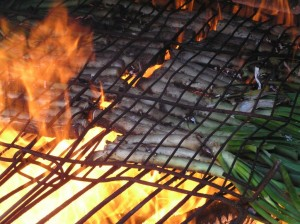 Calçots on the Barbeque