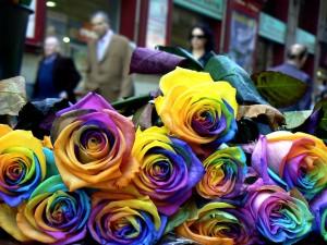 La Diada de Sant Jordi, Barcelona