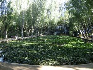 Turo parc Sarria